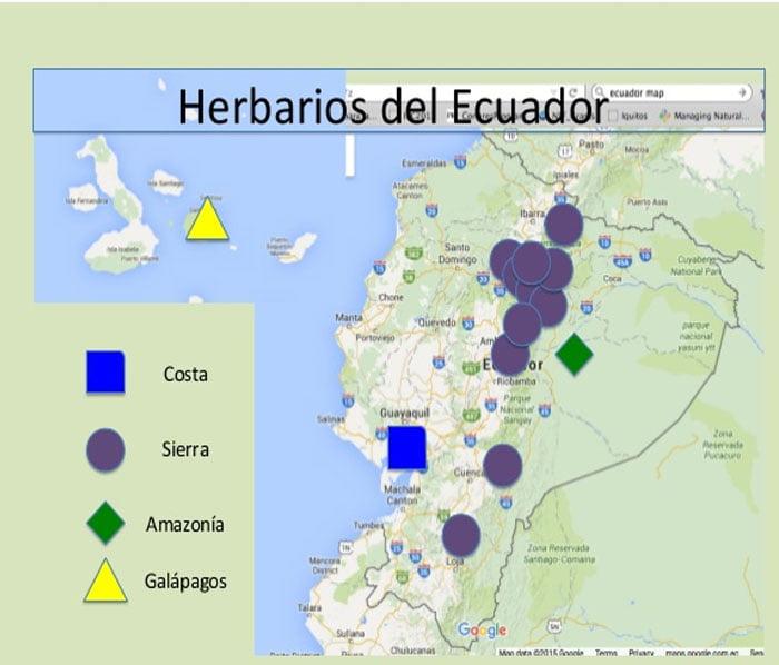 Herbarios y Museos de Historia Natural del  Ecuador