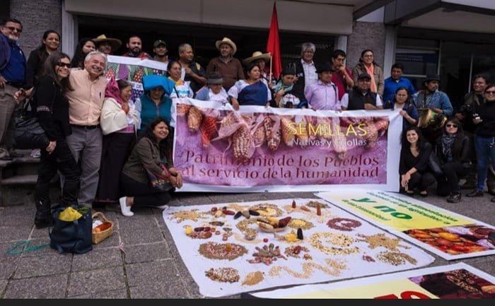 «Queremos un Ecuador libre de transgénicos»