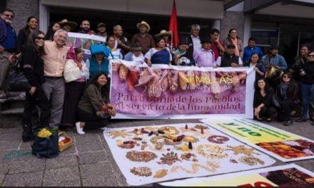 Queremos un Ecuador libre de transgénicos