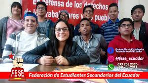 FESE: garantizar el proceso educativo por otros medios