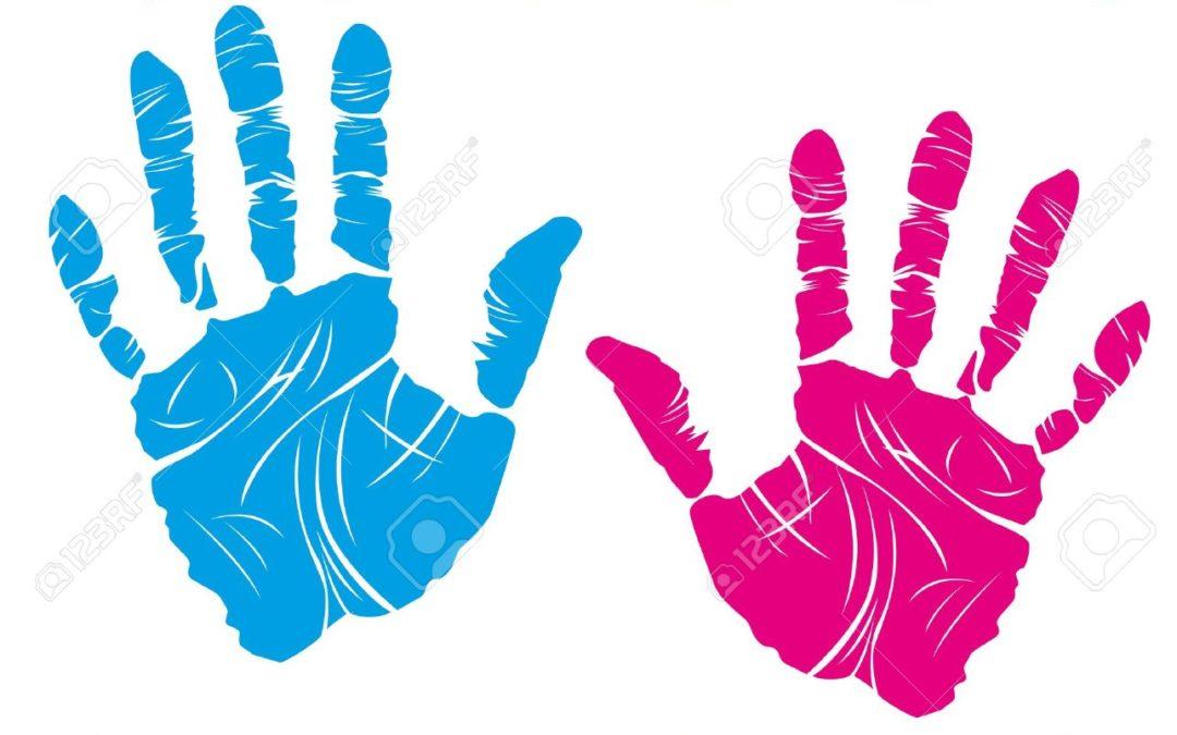 Las manos: una maravilla de la evolución biológica