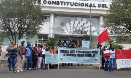 Trabajadores de Siembra EP, realizan demanda de inconstitucionalidad