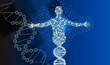 El genoma bajo la lupa