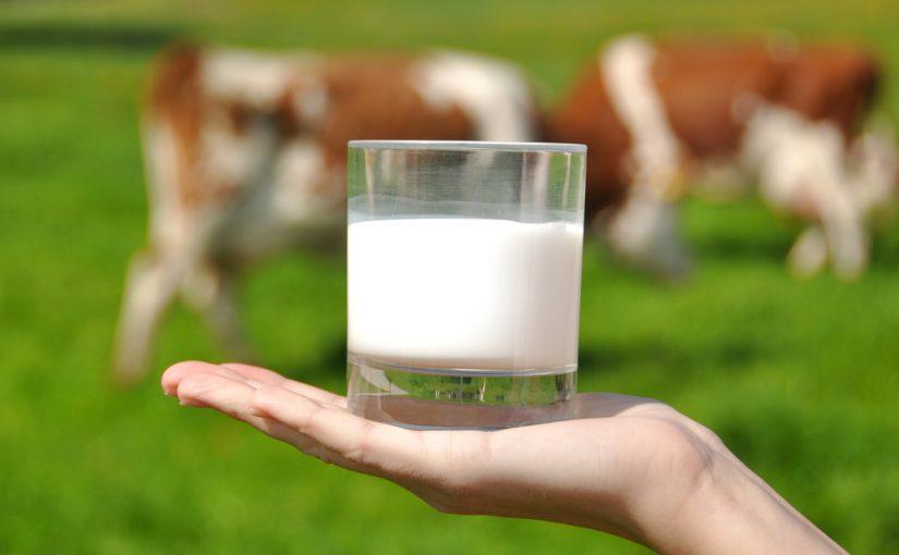 Un millón de vasos de leche, ¿solución de la desnutrición infantil?